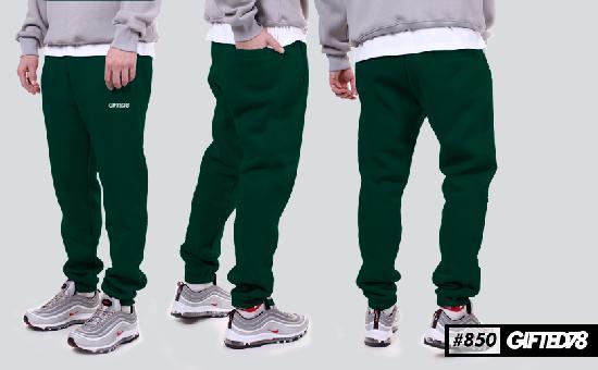 Штаны GIFTED FX 18/850 зеленый